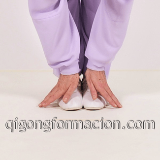 Qi Gong - Chi Kung programa profesional de formación.