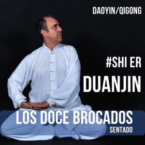 Shi Er Duan Jin | Los Doce Brocados Sentado cursos profesionales