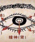 Qigong Ming Mu Gong - Ojos Brillantes.