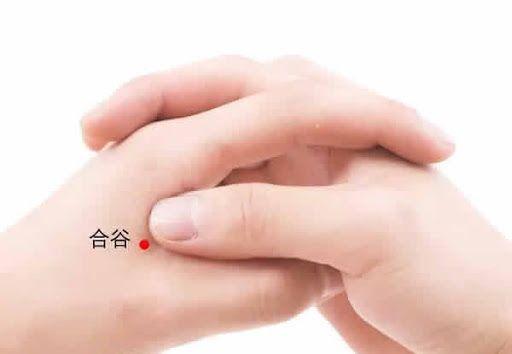 El punto Hegu (4IG)